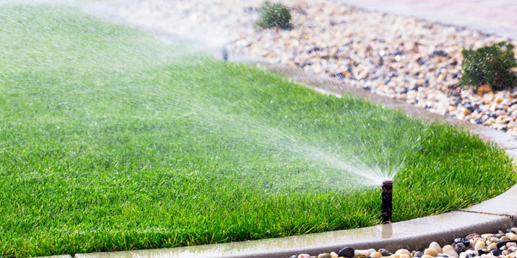 Water restrictions now in place