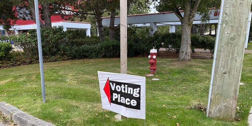 Richmond makes use of alternative voting methods