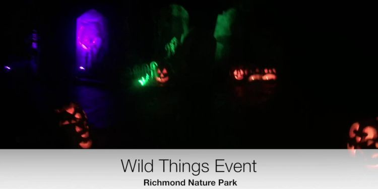 Wild Things Pathway