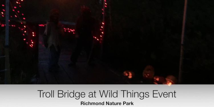 Wild Things Troll Bridge